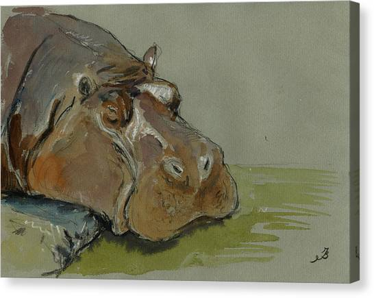 Hippos Canvas Print - Hippo Sleeping by Juan  Bosco