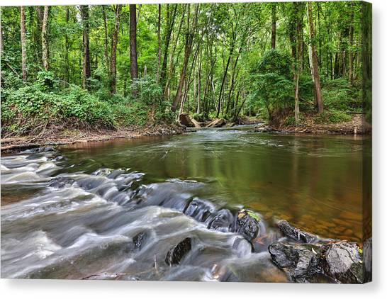 Hitchcock Creek Flow Canvas Print