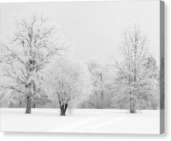 Hoar Frost Morning Canvas Print by Rob Huntley