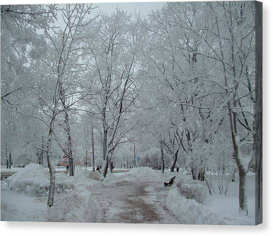Canvas Print - Hoar Frost On Everything by Christine Rivers