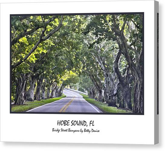 Hobe Sound Fl-bridge Street Banyans Canvas Print