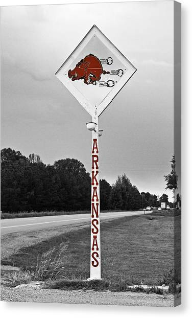 University Of Arkansas Canvas Print - Hog Sign - Selective Color by Scott Pellegrin