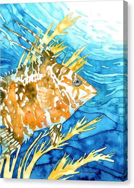 Hogfish Portrait Canvas Print