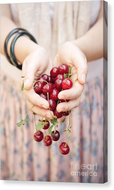 Fruit Canvas Print - Holding Cherries  by Viktor Pravdica