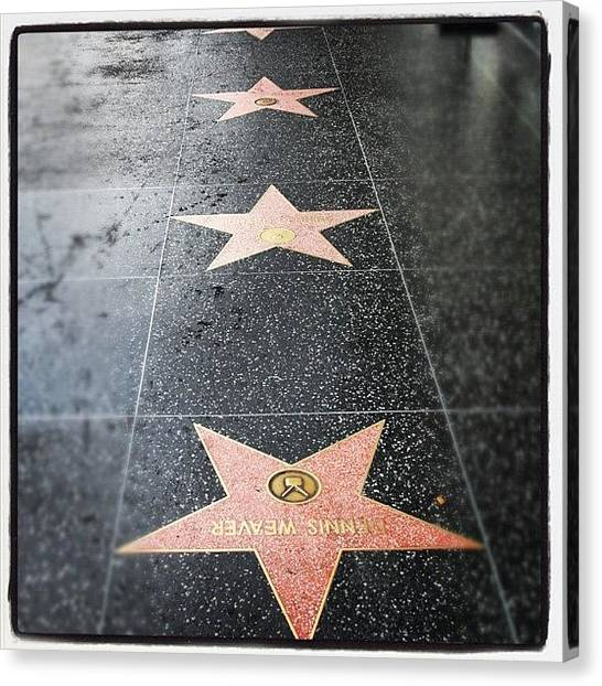Stars Canvas Print - #hollywood #walkoffame #tour #tourist by Jill Battaglia