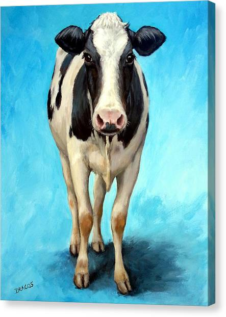 Cow Canvas Print - Holstein Cow Standing On Turquoise by Dottie Dracos