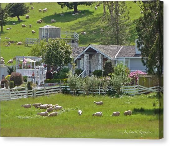 Home Sheep Home Canvas Print