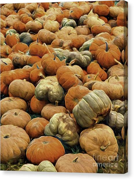 Homeless Pumpkins Canvas Print