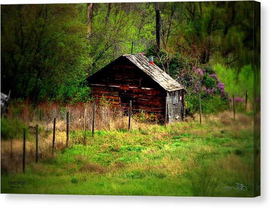 Homestead - Vaseux Lake Canvas Print