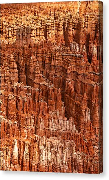 The Amphitheatre Canvas Print - Hoodoos Of Bryce by Andrew Soundarajan