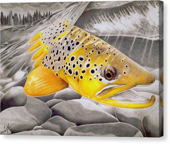 Fly Fishing Canvas Print - Hookjaw On The Move by Nick Laferriere