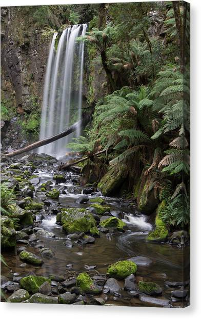Great Otway National Park Canvas Print - Hopetoun Falls And Stream by Heather Provan
