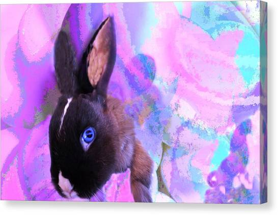 Hoppy Easter Canvas Print