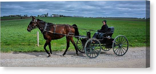 Horse And Buggy On The Farm Canvas Print
