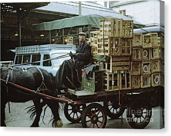 Horse And Cart London 1973 Canvas Print by David Davies