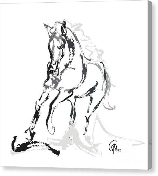 Horse- Andalusian Angel Canvas Print
