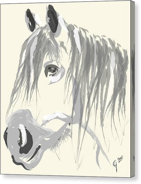 Horse- Big Jack Canvas Print