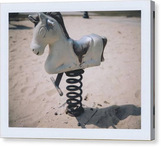 Horse Canvas Print by Brady D Hebert