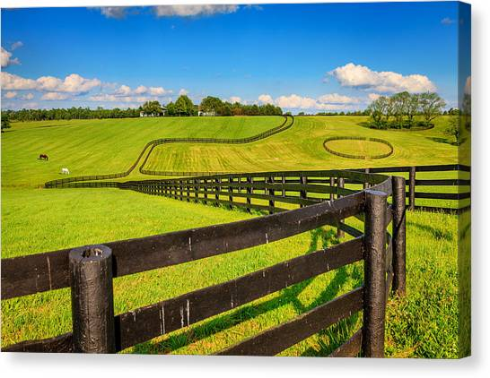 Horse Farm Fences Canvas Print