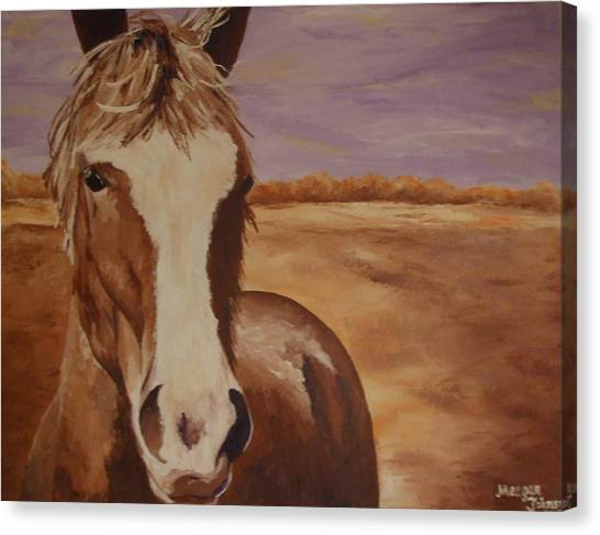 Farm Animals Canvas Print - Horse In Field by Meagan Johnson