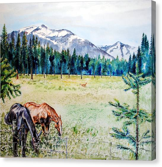 Horse Meadow Canvas Print by Tracy Rose Moyers