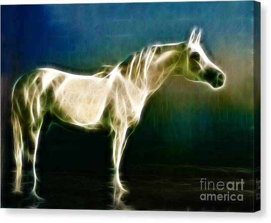 Horse Of Light Canvas Print by Jo Collins