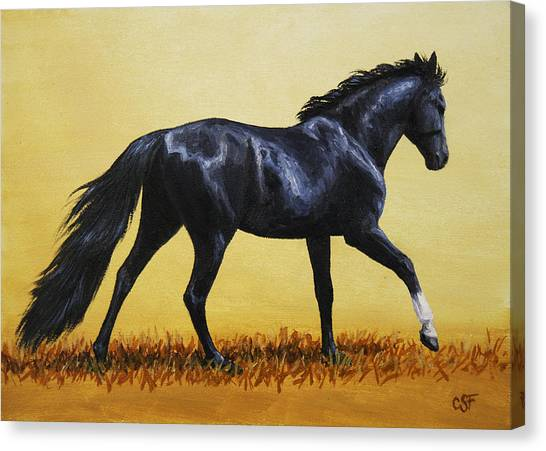 Black Stallion Canvas Print - Horse Painting - Black Beauty by Crista Forest