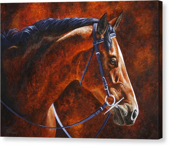 Hanoverian Canvas Print - Horse Painting - Ziggy by Crista Forest