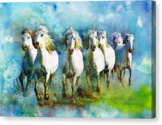 Polo Canvas Print - Horse Paintings 005 by Catf
