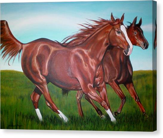 Horse Play Canvas Print by Michael Snyder