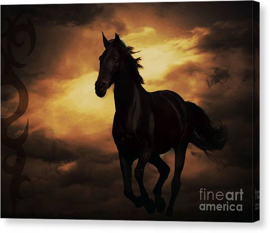 Horse With Tribal Tattoo  Canvas Print