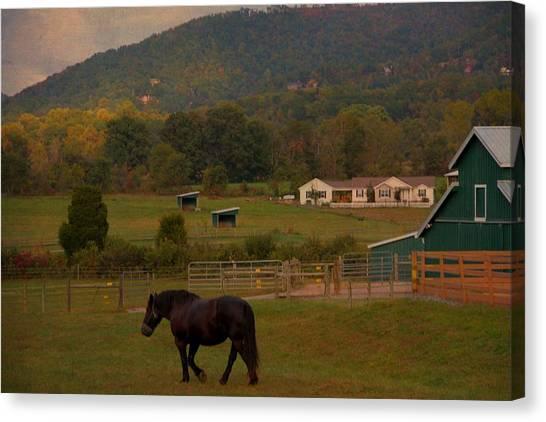 Gatlinburg Tennessee Canvas Print - Horseback Riding In Gatlinburg by Dan Sproul