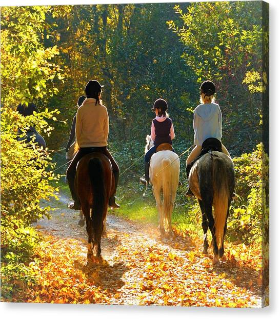 Forests Canvas Print - Horseback Riding In The Autumnal Forest by Matthias Hauser