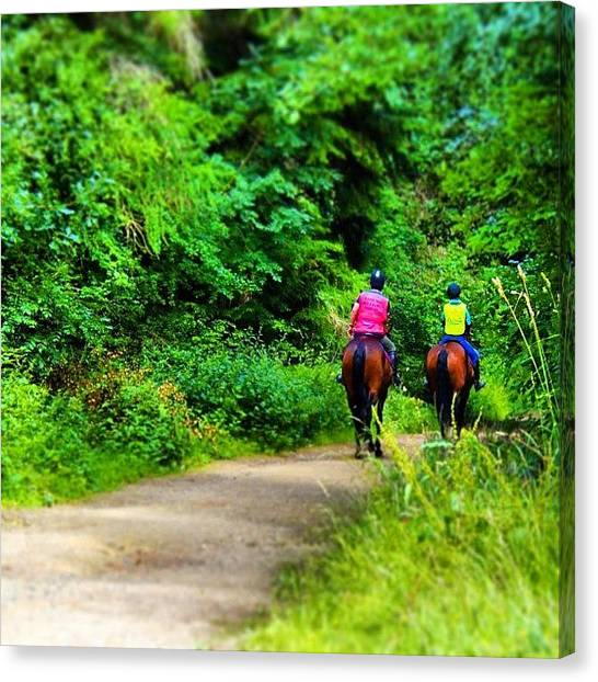 Forest Paths Canvas Print - #horse#riding#forest #woodland by Vicky Combs