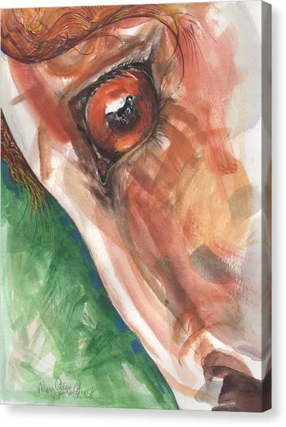 Horses Eye Canvas Print