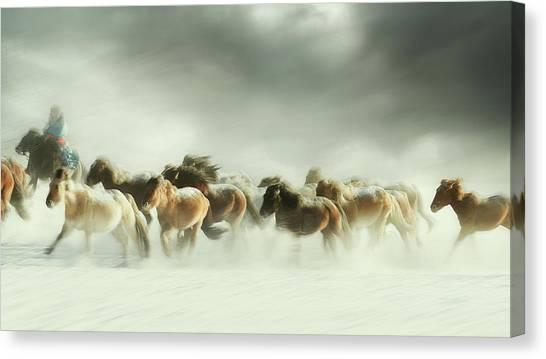 Horses Galloping Canvas Print - Horses Gallop by Shu-guang Yang