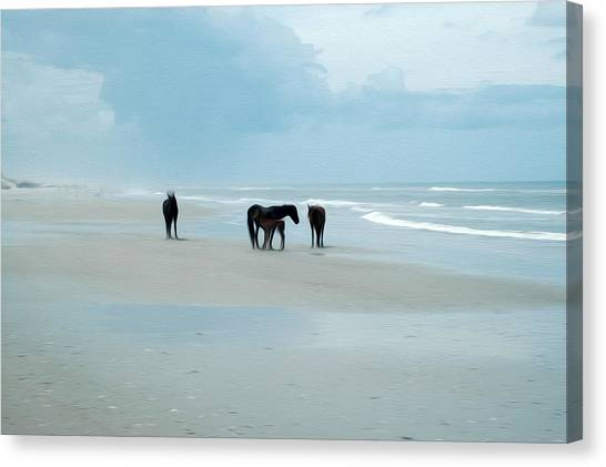 Horses Of The Obx Canvas Print