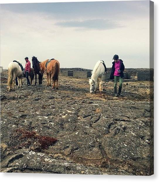 Lava Canvas Print - #horses  On A Lava Flow... #iceland by Alexandra Cook