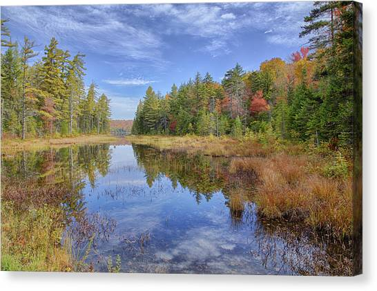 Horseshoe Lake Hdr 01 Canvas Print