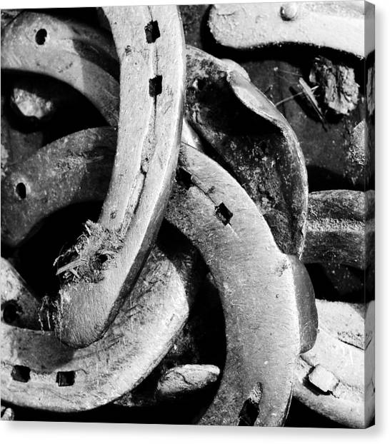 Detail Canvas Print - Horseshoes Black And White by Matthias Hauser