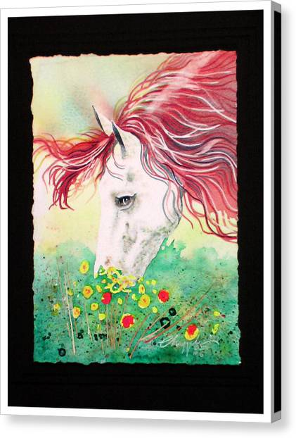 Horsin Around Number Six Canvas Print by David  Chapple