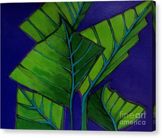 Hosta Blue Tip Two Canvas Print