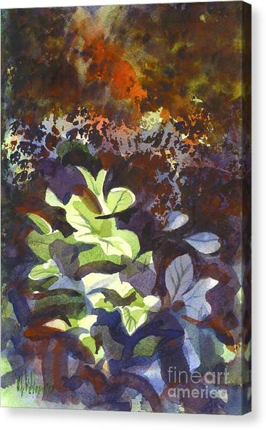 Hostas In The Forest Canvas Print