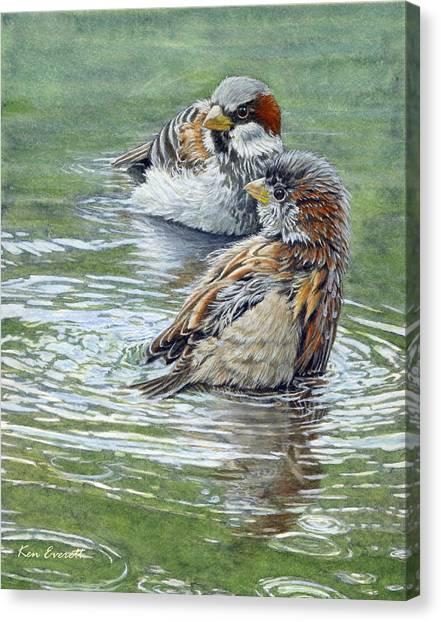 England Artist Canvas Print - House Sparrows  by Ken Everett