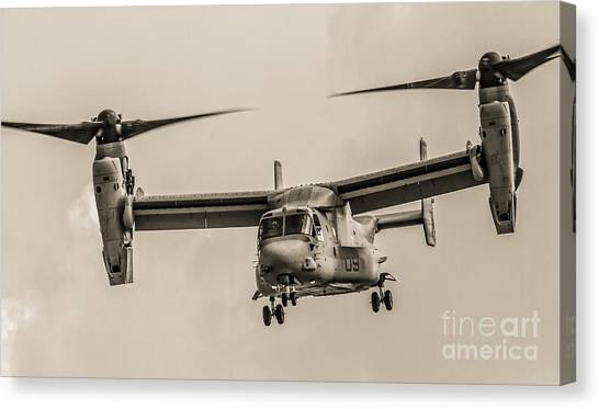 Hover Bw Canvas Print