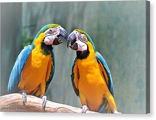 How About A Little Kiss Canvas Print