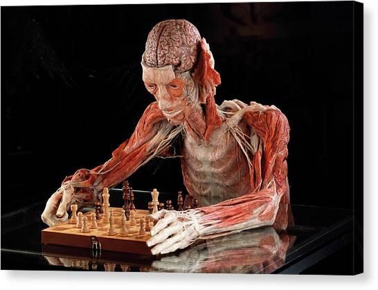 Dead Body Tabletop Art
