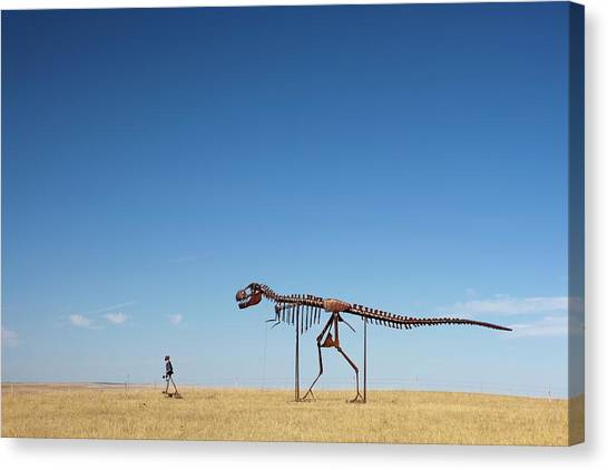 T-bone Canvas Print - Human And T. Rex Skeletons by Jim West