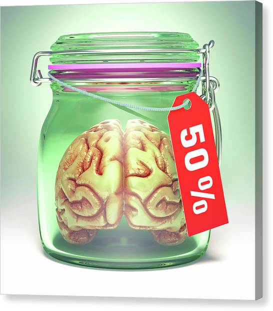 Health Insurance Canvas Print - Human Brain In Glass Jar With Sale Label by Ktsdesign/science Photo Library