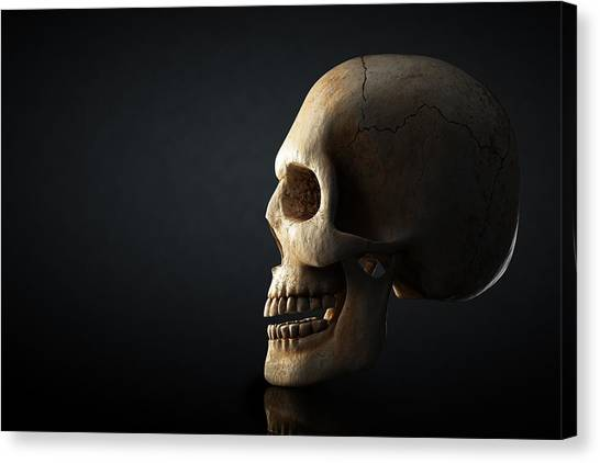 Skulls Canvas Print - Human Skull Profile On Dark Background by Johan Swanepoel